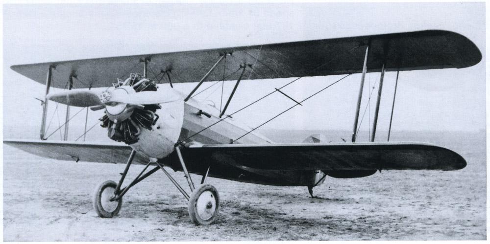plane SET-31 | 1930 (double control)