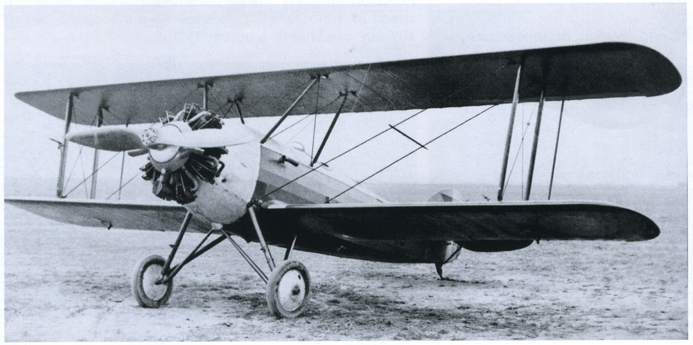 avion SET-31 | 1930 (dubla-comanda)